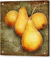 4 Little Pears Are We Acrylic Print
