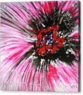 Mannflowers Acrylic Print
