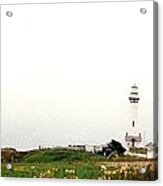 Point Arena Lighthouse Acrylic Print