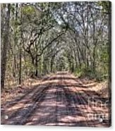 Road To Angel Oak Acrylic Print