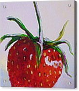 Single Strawberry Acrylic Print