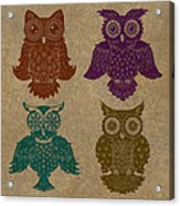 4 Sophisticated Owls Colored Acrylic Print by Kyle Wood
