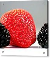 Strawberry Blackberry Acrylic Print