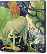 The White Horse Acrylic Print