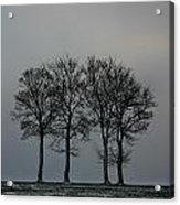4 Trees In A Winters Landscape Acrylic Print