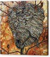 Wasp Nest Acrylic Print