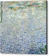 Waterlilies Morning With Weeping Willows Acrylic Print