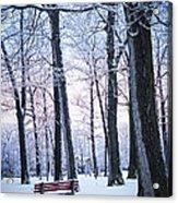 Winter Park Acrylic Print