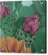 Yellow Cactus Blossom Acrylic Print
