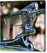 41 Packard Badge Acrylic Print