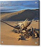 Silver Lake Sand Dunes Acrylic Print