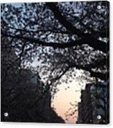 #landscape Acrylic Print