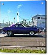 4926 Esta Safety Park 08-24-14 Acrylic Print