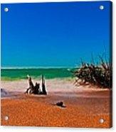 4x1 Florida Beach Panorama 732 Acrylic Print