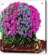 Beautiful Arrangement Of Flowers Acrylic Print