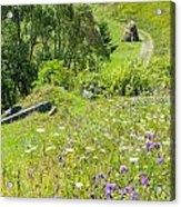 Carpathians Landscape Acrylic Print