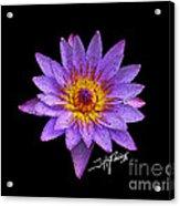 Dots Of Flowers Acrylic Print