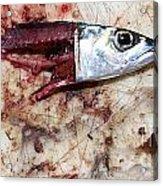 Fish Bait Acrylic Print