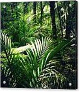 Jungle Leaves Acrylic Print