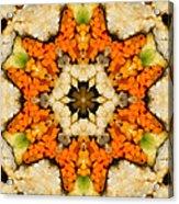 Kaleidoscope Vegetable Sushi Acrylic Print