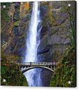 Multnomah Falls. Acrylic Print