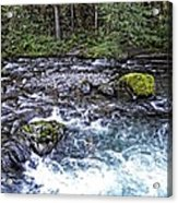 Oregon Acrylic Print