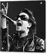 U2 - Bono Acrylic Print