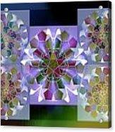 5x5 Synthesis 10 Acrylic Print
