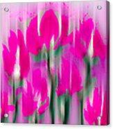6 1/2 Flowers Acrylic Print