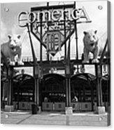 Comerica Park - Detroit Tigers Acrylic Print