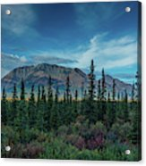 Denali Highway, Route 8, Offers Views Acrylic Print