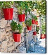 Flower Pots 2 Acrylic Print