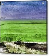 Green Fields With Birds Acrylic Print