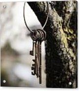 Keys Acrylic Print