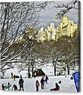 Snowboarding  In Central Park  2011 Acrylic Print