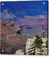 South Rim Of The Grand Canyon Acrylic Print