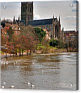 Worcester Cathedral And Swans Acrylic Print