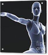 Yoga Warrior II Pose Acrylic Print