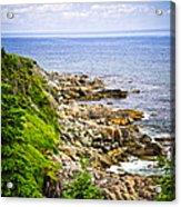 Atlantic Coast In Newfoundland Acrylic Print