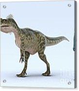 Dinosaur Monolophosaurus Acrylic Print