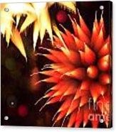 Fireworks Art Acrylic Print