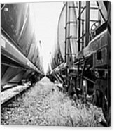 freight grain trucks on former canadian pacific railway now great sandhills railway through leader S Acrylic Print
