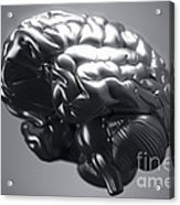 Metallic Brain Acrylic Print