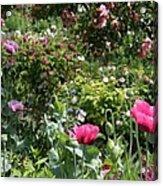 Monets Garden - Giverney - France Acrylic Print