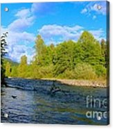 Salmon  Creek  Acrylic Print by Tim Rice