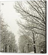 Snow Covered Road And Trees After Winter Storm Acrylic Print