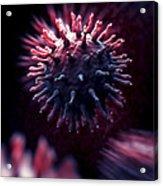 Swine Influenza Virus H1n1 Acrylic Print