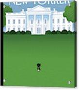 New Yorker April 27th, 2009 Acrylic Print