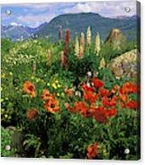 Usa, Colorado, Crested Butte Acrylic Print