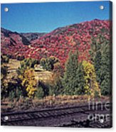 744 Sl Two Tracks Acrylic Print